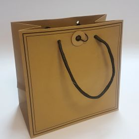 Brown kraft bag twisted handles